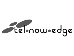 Logo Tel Now Edge